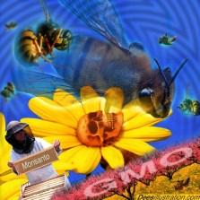 monsanto - bees