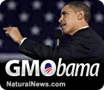 GMO - Obama
